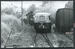 Photo J. Bazin 140 X 90 - Tramways De Corrèze (T.C.) - Mai 1958 (1er Voyage Du F.A.C.S. - Autorail Billard Entre-autre - Trains