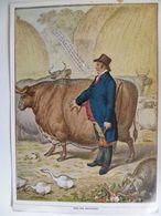 Great English Farmer Caricature  I Serie: Raubstaat England, Sammelwerk Nr. 16 Bild 54 - Trade Cards