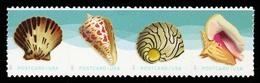 Etats-Unis / United States (Scott No.5166a - Shells) [**]  Strip - United States