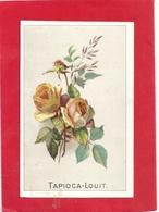 """IMAGE PUB DE """" TAPIOCA-LOUIT """" De BORDEAUX . 2 SCANES - Publicités"""