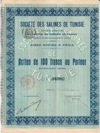 Titre Ancien - Société Des Salines De Tunisie - Société Anonyme - Titre De 1906 - - Afrique