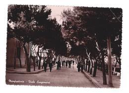 CARTOLINA DI MANFREDONIA - FOGGIA - 2 - Manfredonia