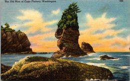 Washington The Old Man Of Cape Flattery - Etats-Unis