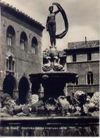 Fano - Fontana Della Fortuna - Formato Grande Non Viaggiata – E 16 - Fano