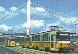 TRAM TRAMWAY RAIL RAILWAY RAILROAD GANZ MAVAG CSMG GCSM ICS TATRA BKV BUDAPEST ELISABETH BRIDGE * Top Card 0460 Hungary - Tramways