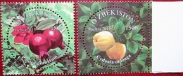 Uzbekistan  2015 Flora  Fruits  2 V MNH - Ouzbékistan
