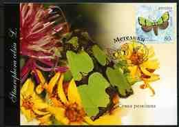 Ukraine 2005 MiNr. 699 Butterflies - II Staurophora Celsia MC III - Oekraïne