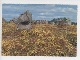 La Bretagne, Carnac, Alignements (cp N°20/509 Jean) - Dolmen & Menhirs