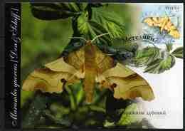 Ukraine 2005 MiNr. 700 Butterflies - II Oak Hawk-moth MC IV - Oekraïne