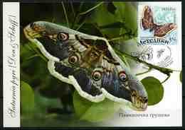 Ukraine 2005 MiNr. 701 Butterflies - II Giant Peacock Moth MC V - Oekraïne