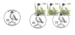 Belgium - Stamp With First Day  Postmark - BUZIN :   Mediterranean Gull  -  Ichthyaetus Melanocephalus - Seagulls