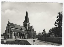 Z06 - Asse - St-Martinuskerk - Asse