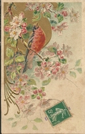 Rouge Gorge Chant Fleurs Fruitier Gaufree - Altri