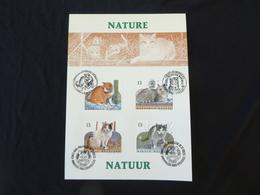 BELG.1993 2521 2522 2523 & 2524 FILATELIC CARD : Nature - Chats Européens / Natuur - Europese Katten - FDC