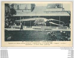 14 LUC-SUR-MER. Squelette De Baleine Au Jardin Municipal - Luc Sur Mer