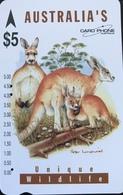 AUSTRALIE  -  Card Phone  -  Kangaroo  -  $ 5 - Australia