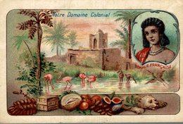 CHROMO NOTRE DOMAINE COLONIAL LA SOMALIE FRANCAISE - Chromos