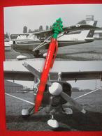 FOTOGRAFIA  AEREO  BEAGLE A 109 AIREDALE   I-CINA - Aviazione