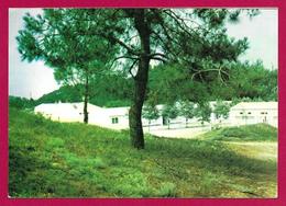 Carte Postale Moderne Saint Hilaire De Riez - Centre Marin Paul Vaillant Couturier De La Ville De Villejuif - Saint Hilaire De Riez