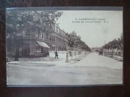 LAMBERSART-  Avenue Du Colonel Driant   édit: E.C - Lambersart