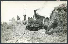 Tramway De La Corrèze (T.C.) Photo Cartonnée Mai 1959 - Train Entre Sourzac Et Lapleau - 130 T N°8 - Voir 2 Scans - Trains