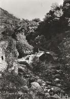 Cartolina - Postcard /  Viaggiata - Sent /  Meana Di Susa, Rio Della Streghe. ( Gran Formato ) - Italia