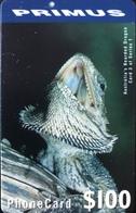 AUSTRALIE  -  Phonecard   -  PRIMUS  -  Australian's Bearded Dragon  -  $ 100 - Australië