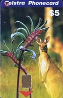 AUSTRALIE  -  Phonecard   -  Telstra  -  Kangaroo  -  $ 5 - Australia