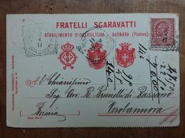 REGNO - Cartolina Con Pubblicità E Affrancata Con Perfin + Spese Postali - 1900-44 Victor Emmanuel III