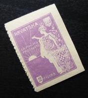 Croatia C1920 Yugoslavia Charity Stamp Cinderella B3 - Verzamelingen & Reeksen