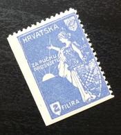 Croatia C1920 Yugoslavia Charity Stamp Cinderella B4 - Verzamelingen & Reeksen