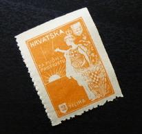 Croatia C1920 Yugoslavia Charity Stamp Cinderella B5 - Verzamelingen & Reeksen