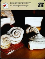 LE GRAND-PRESSIGNY  - Musée Préhistoire  - Photo Fossiles - FICHE GEOGRAPHIQUE - Ed. Larousse-Laffont - Fossiles