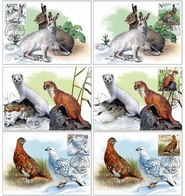 Belarus 2020 Set 6 MC Maximum Card Seasonal Variability White Hare, White Parrot, Least Weasel Birds Bird Oiseaux Oiseau - Hasen