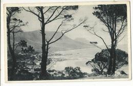 CPSM, Afrique Du Sud , Camp Bay - Cap Town , Ed. The Newman  Art Pub. - South Africa