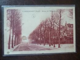 LAMBERSART   Avenue De L'hippodrome - Lambersart