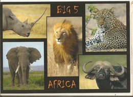 CPM, Afrique Du Sud  ( R.S.A. ) , Big 5, Africa , Lion , Rhino, Leopard , Elephant , Buffalo - Ed. N.H. Savana - South Africa