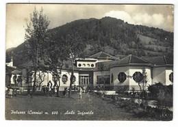 CL058 - PALUZZA CARNIA UDINE ASILO INFANTILE ANIMATA 1964 - Italy