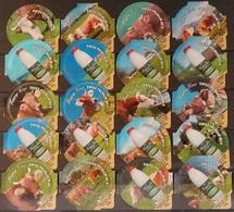 20 KRD Schweiz - Happy Cow  - Kuh   - 6118 - Riegel - Milk Tops (Milk Lids)