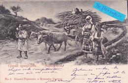 SERBIE- PAYSANS SERBES-ATTELAGE- -Marcophile Serbie- Cachets-1902 (01/6/20) - Serbie