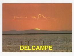 DF / COUCHER DE SOLEIL SUR LA CAMARGUE - Contraluz