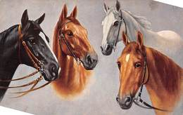 Sport.   Hippisme :       Quatre Têtes De Chevaux     Carte Dessinée    1    (voir Scan) - Horse Show