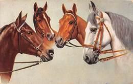 Sport.   Hippisme :       Quatre Têtes De Chevaux     Carte Dessinée    2  (voir Scan) - Horse Show