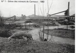 CARMAUX ( 81 ) - Grève Des Mineurs - 1983  ( C.P.M.  , Gd - Ft ) - Grèves