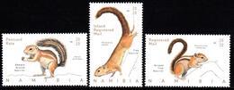 Namibia - 2020 Squirrels Set (**) - Stamps