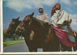 CPM, Afrique Du Sud  ( R.S.A. ) , N°723, Lesotho ,Colourful Women On Horseback  Ed. Artco - South Africa