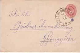 Enveloppe 14 Janvier 1896 / Cachet Convoyeur Brasso Budapest / Pour Gyöngyös / Hongrie - Postmark Collection
