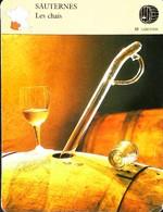 SAUTERNES - Les Chais - Photo Pipette De Cave - FICHE GEOGRAPHIQUE - Ed. Larousse-Laffont - Dishware, Glassware, & Cutlery