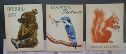 Album Du Père Castor - Lot De 3 Cartes Postales - Martin Pêcheur/Bourru/Panache L'Ecureuil - 2 Scans - Enfants
