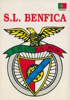 LISBOA - CLUBES DE FUTEBOL - S.L. BENFICA ( Ed. Delmira Ventura)  Carte Postal - Lisboa